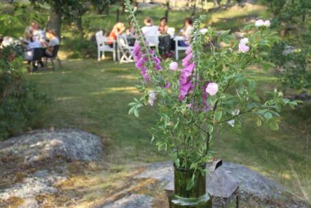 3-5 juli: Sommarretreat med yinyoga och meditation (Max 10 deltagare)